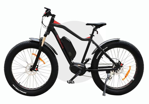 TG-S001 Fat Tire Electric Bike