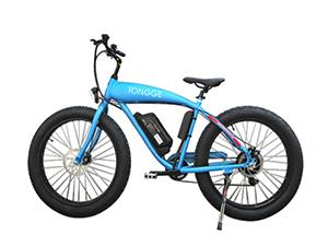 TG-S002 Fat Tire Electric Bike