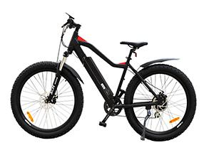 TG-M001 Electric Mountain Bike
