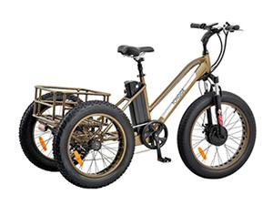 TG-T002 Fat Tire Electric Tricycle